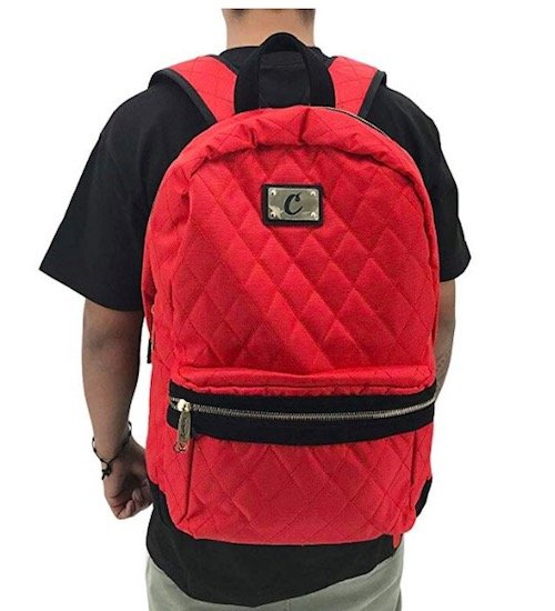 Cookies Berner V3 Quilted odor proof backpack